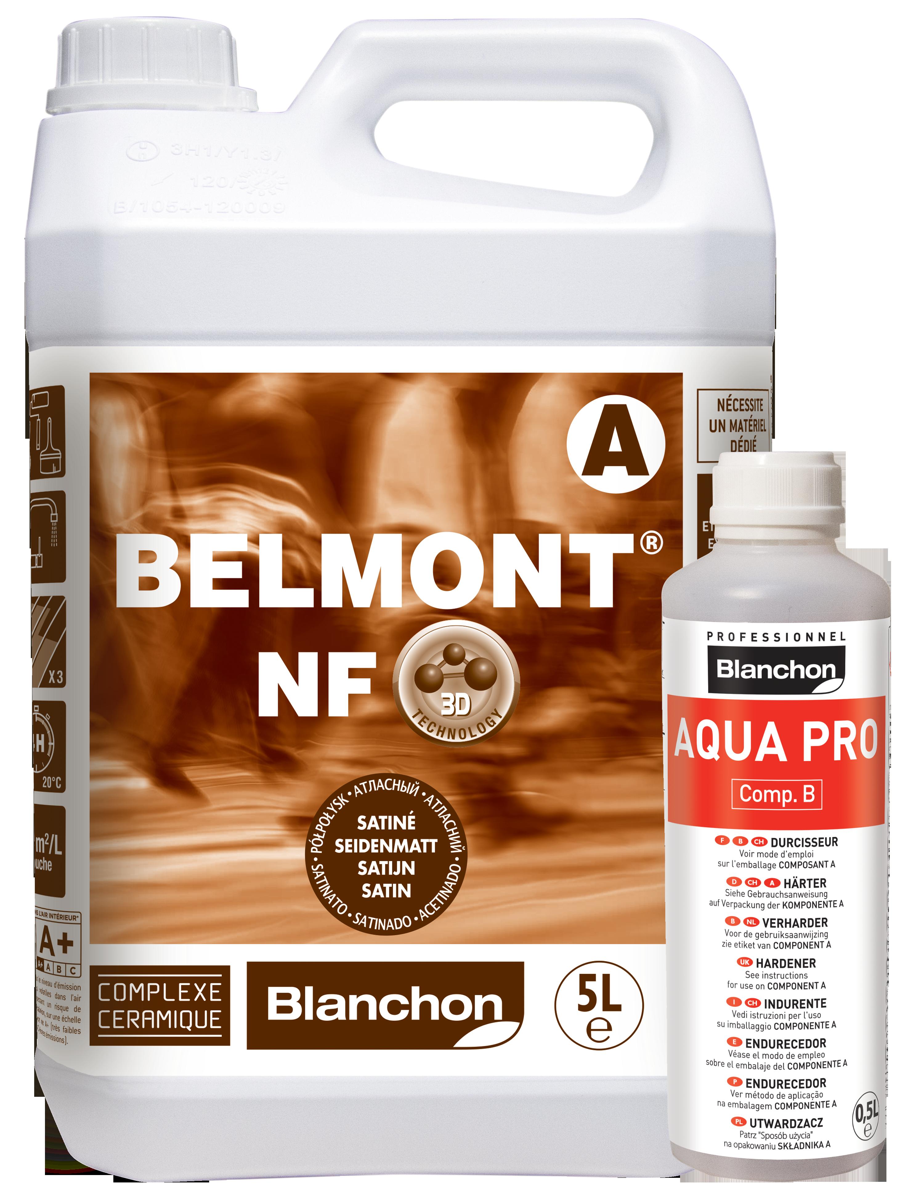 Vitrificateur Parquet BELMONT® NF
